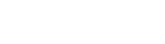 logo securess